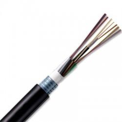DIGITUS - Digitus 24 Core (6x4) Sm 9/125 Slt G652d Çelik Zırhlı Fo Kablo.